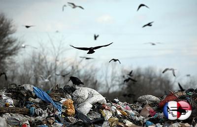 Европейские инвесторы помогут Кизляру превратить отходы вдоходы&nbsp